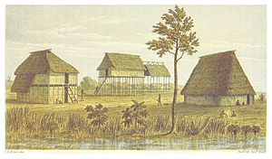 Charles Barrington Brown - Illustration of Karinambo form Canoe and Camp Life in British Guiana