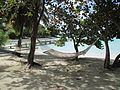 British Virgin Islands — Jost van Dyke — Hammocks.jpg