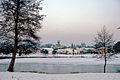 Brocas sous la neige 25.jpg