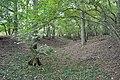 Bullsdown Camp - panoramio (1).jpg