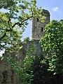 Burg Krautheim 2013 (1).jpg