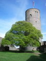 Burg Münzenberg 10.jpg