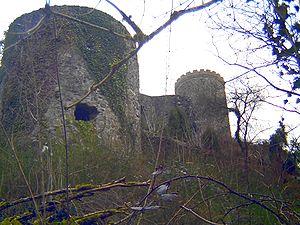 Husen Castle (Hausach) - Image: Burg hausach 2