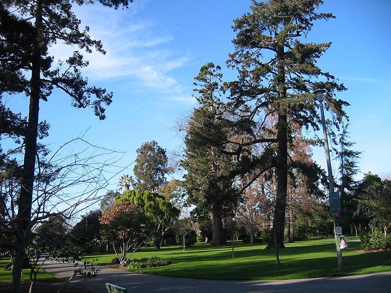File:Burlingame washington park1.JPG