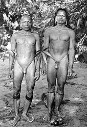 Indigeni Dajaki del Borneo con bastone del pene (Ampallang)