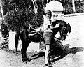 COLLECTIE TROPENMUSEUM Een Europees jongetje aait een pony met op de achtergrond verscholen achter de pony een gehurkt iemand die het dier vast houdt TMnr 60019709.jpg