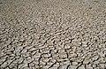 CSIRO ScienceImage 4405 Cracked soil at Chowilla SA.jpg