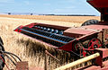 CSIRO ScienceImage 4487 Harvesting equipment near Blyth in the mid north of South Australia 1986.jpg