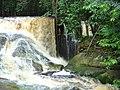 Cachoeira do santuário II - panoramio (4).jpg