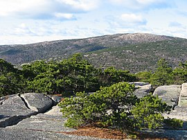 Cadillac Mountain from Champlain Mountain - panoramio.jpg