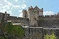 Cahir Castle, Castle St, Cahir (506764) (27959296834).jpg