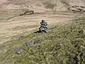 Cairn on Meikle Knypes hillside - geograph.org.uk - 780690.jpg