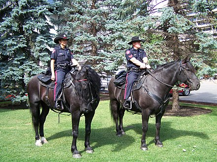 Members of the Mounted Unit of the Calgary Police Service on duty at Olympic Plaza Calgary police on horseback.JPG