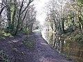 Canal, New Inn - geograph.org.uk - 1762492.jpg