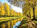 Canal de la Haute-Saône et piste cyclable.jpg