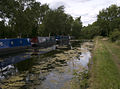Cannock Extension Canal northern terminus.jpg
