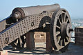 Cannon in Meherangarh fort 39.jpg