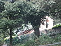 Capella del castell d'Heures.jpg