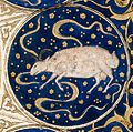 "Capricorn - Horoscope from 'The book of birth of Iskandar"" Wellcome L0040146.jpg"