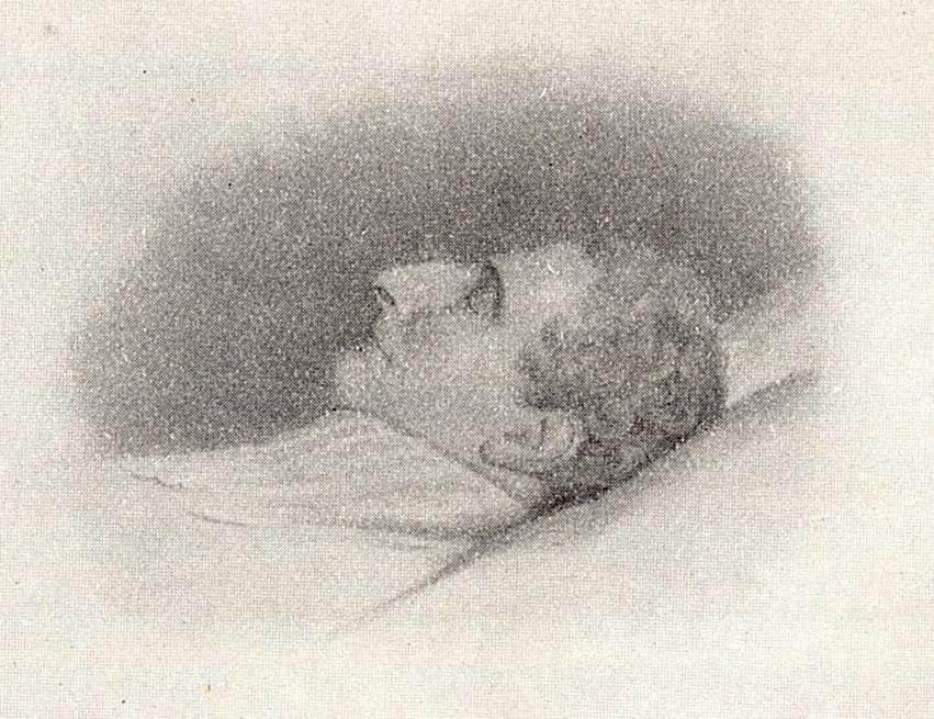 Carl XIV John of Sweden dead 1844