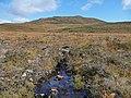 Carn nan Earb - geograph.org.uk - 993919.jpg
