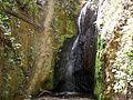 Cascada tras un árbol - panoramio.jpg