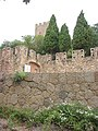 Castell de Requesens 2012 07 13 08.jpg