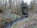 Castlemilk Glen & Snowdrops, Machrie Road, Castlemilk, Glasgow.jpg