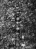 Catacomb Paris.jpg
