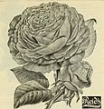 Catalogue 1895 - everything for the fruit grower (1895) (20389078878).jpg