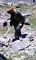 Caucasus Hammond Slides GMR 20.jpg