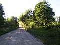 Cels - panoramio (1).jpg