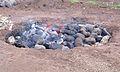 Chauffage des pierres volcaniques.jpg