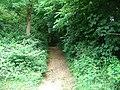 Chemin (17).jpg