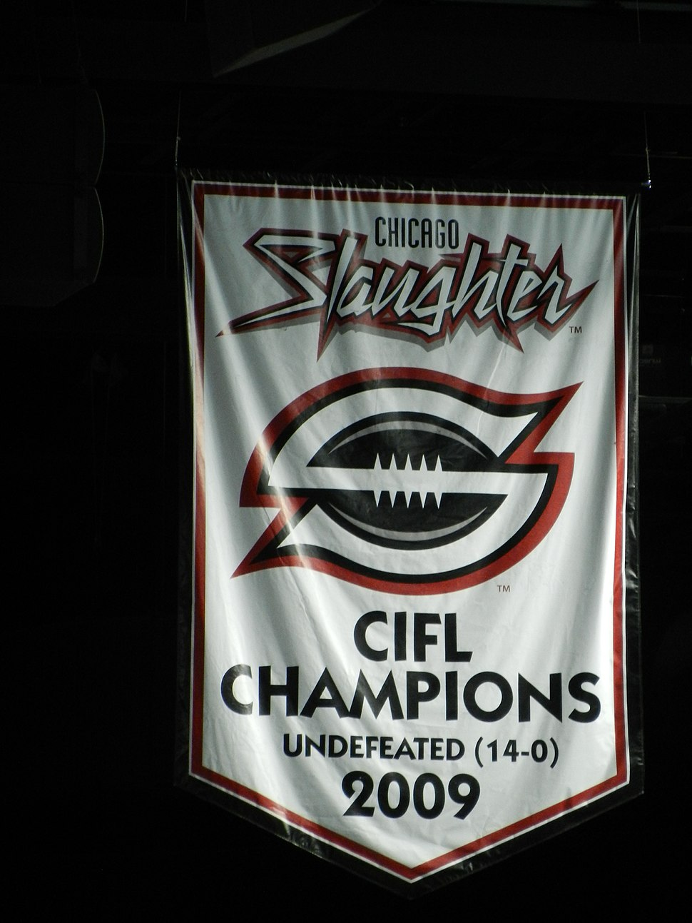 Chicago Slaughter 2009 Champs Banner