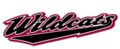 Chico state wildcats wordmark.png