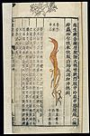 Chinese Materia medica, C17; Plant drugs, Sophora flavescens Wellcome L0039341.jpg