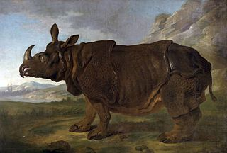 Clara the rhinoceros in Paris in 1749
