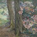 Clara Voortman Rhododendronbusch.jpg