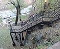 Climbing brush stairway jeh.jpg