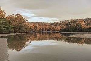 Cockle Creek (Tasmania) - Image: Cockle Creek Tasmania by Aldona Kmiec Photography