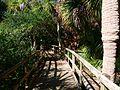 Cocoa Beach at Lori Wilson Park - Flickr - Rusty Clark (31).jpg