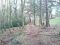 Colgate, UK - panoramio (1).jpg