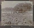 Collectie NMvWereldculturen, RV-A102-1-145, 'Krassiabra'. Foto- G.M. Versteeg, 1903-1904.jpg