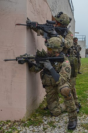 Royal Danish Army - Guard Hussars during Combined Resolve III, in 2014