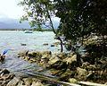 Costão rochoso do Bora - panoramio.jpg