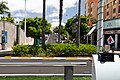 Costa Adeje, Santa Cruz de Tenerife, Spain - panoramio (30).jpg