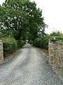 Country Lane - geograph.org.uk - 901488.jpg