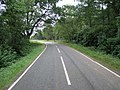 County Boundary in the Trees - geograph.org.uk - 214487.jpg