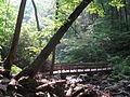 Crabtree Falls 11.JPG